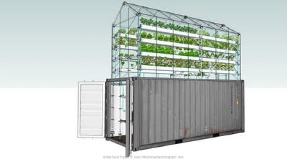 Huertos urbanos damien chivialle noticias de for Buscador de arquitectura