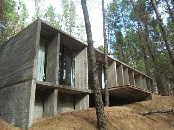 casa de hormign en el bosque de mar azul bak arquitectos noticias de buscador de